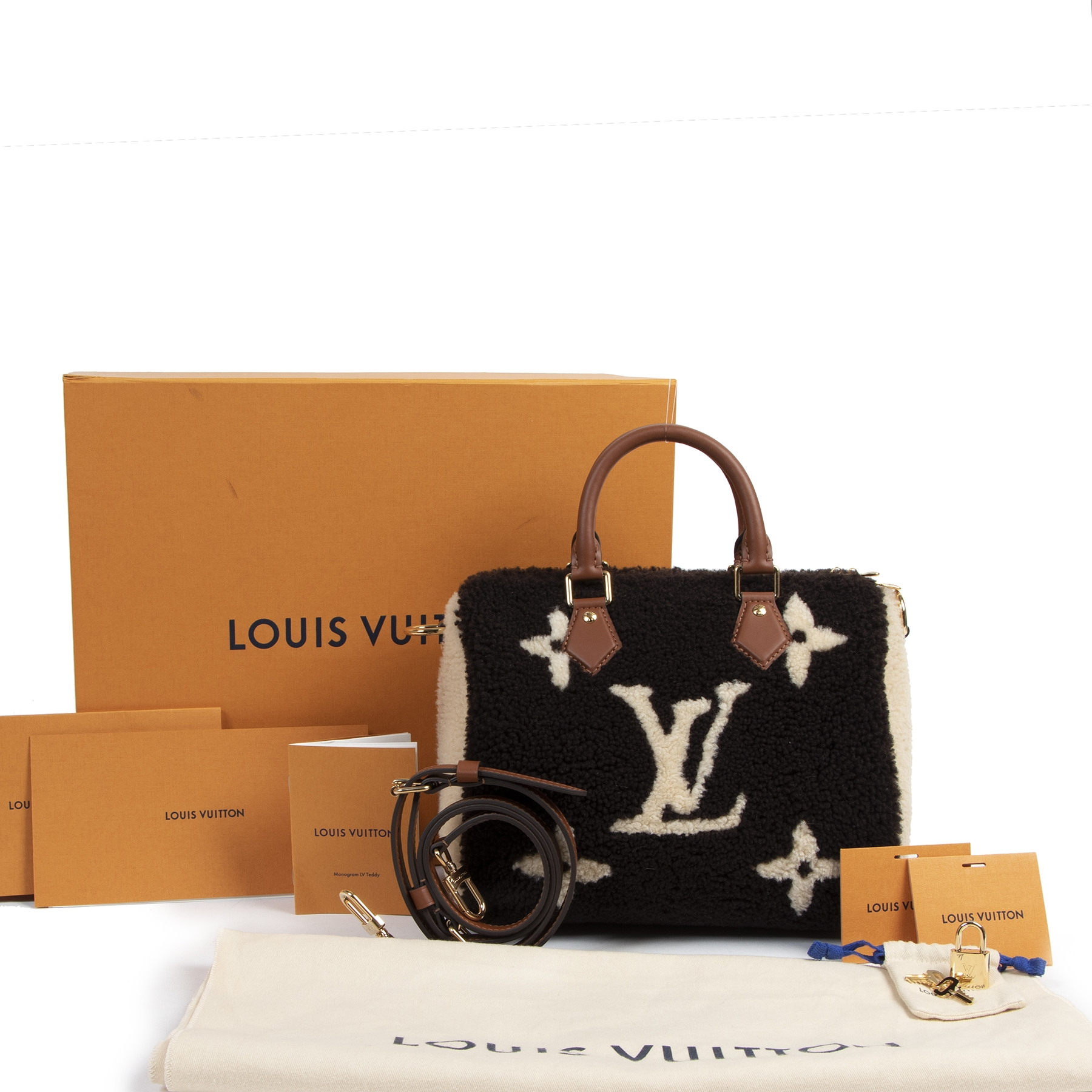 Louis Vuitton Limited Edition Speedy Bandoulière 25 LV Teddy Monogram