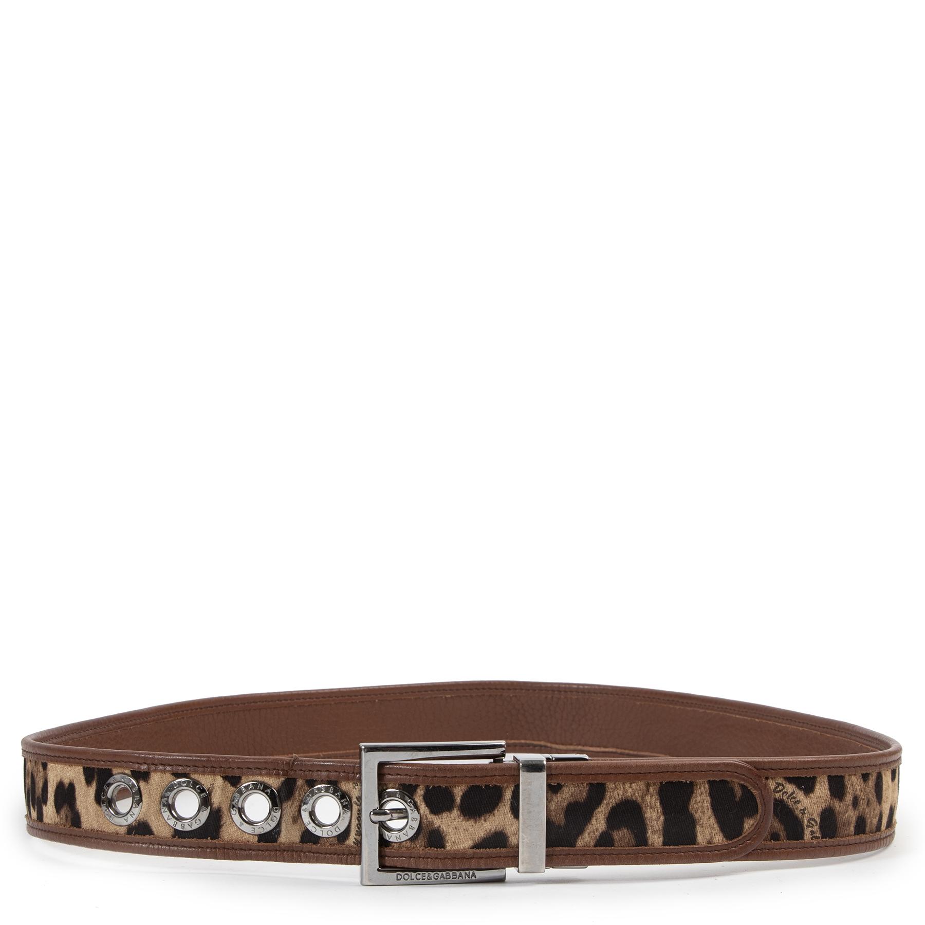 Dolce & Gabbana Leopard Combi Belt - size 95 - te kopen en verkopen