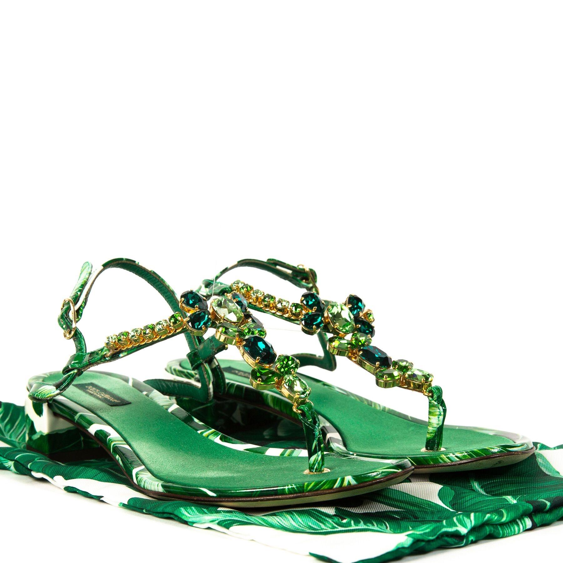 acheter en ligne Dolce & Gabbana Green Banana Leaf T Strap Sandals - Size 38.