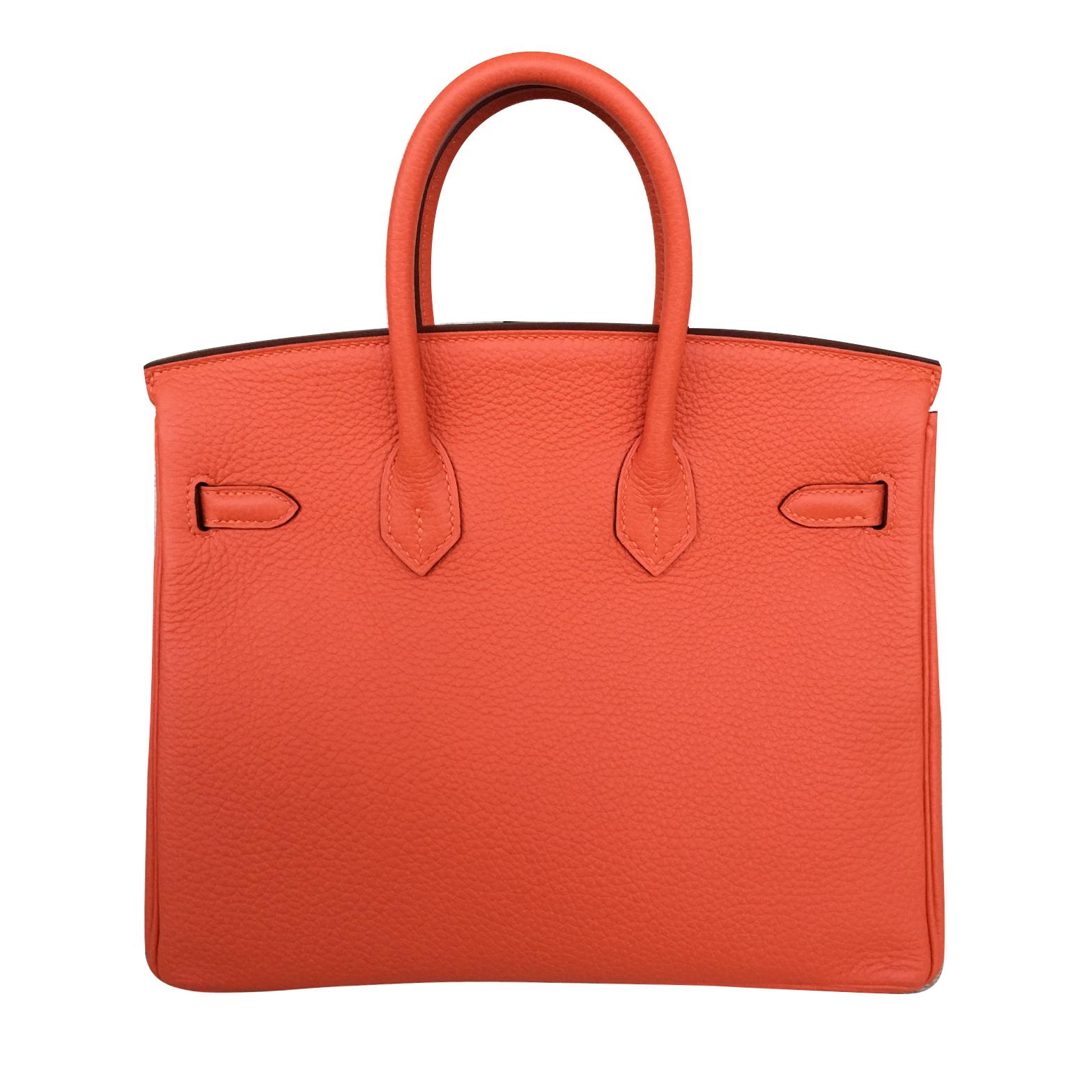 De tas van het moment, de Brand New Hermes Birkin 25 Feu Togo GHW