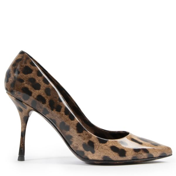 Dolce & Gabbana Leopard Pumps for the best price at Labellov