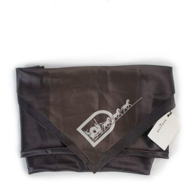 Delvaux Grey Silk Scarf