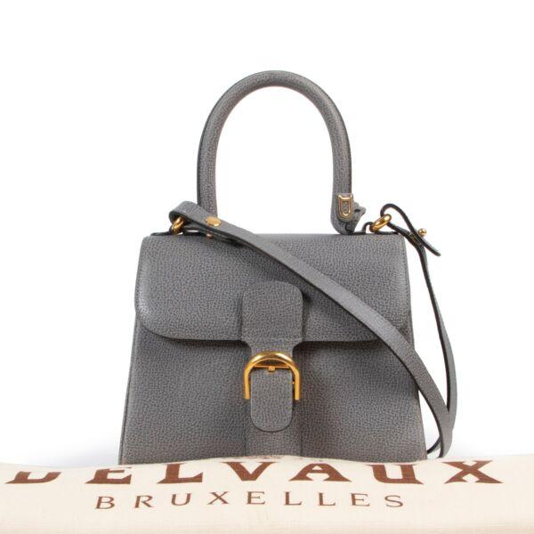 Delvaux Grey Brillant Mini + Strap