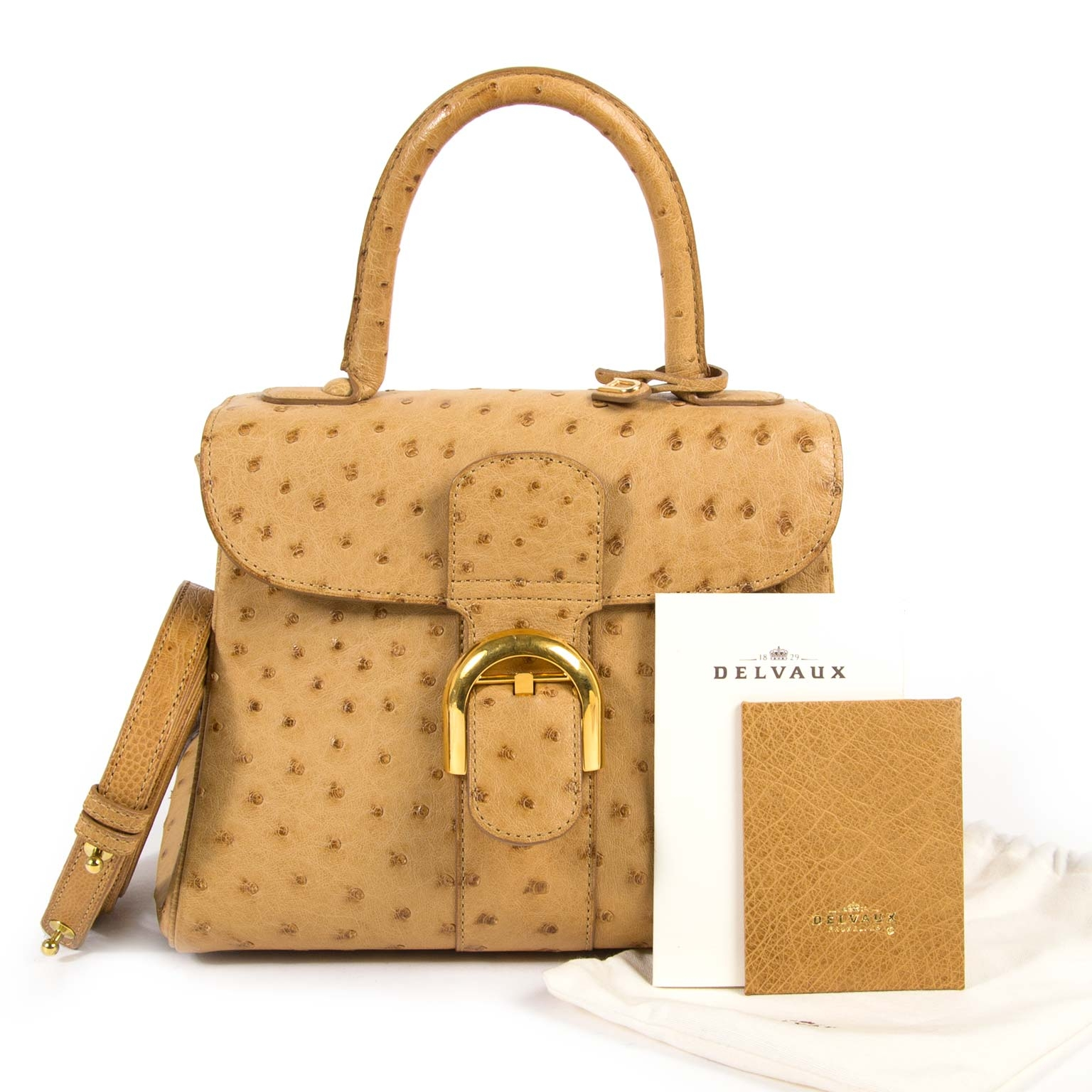 Buy your Delvaux Brillant PM Ostrich Sahara Bag