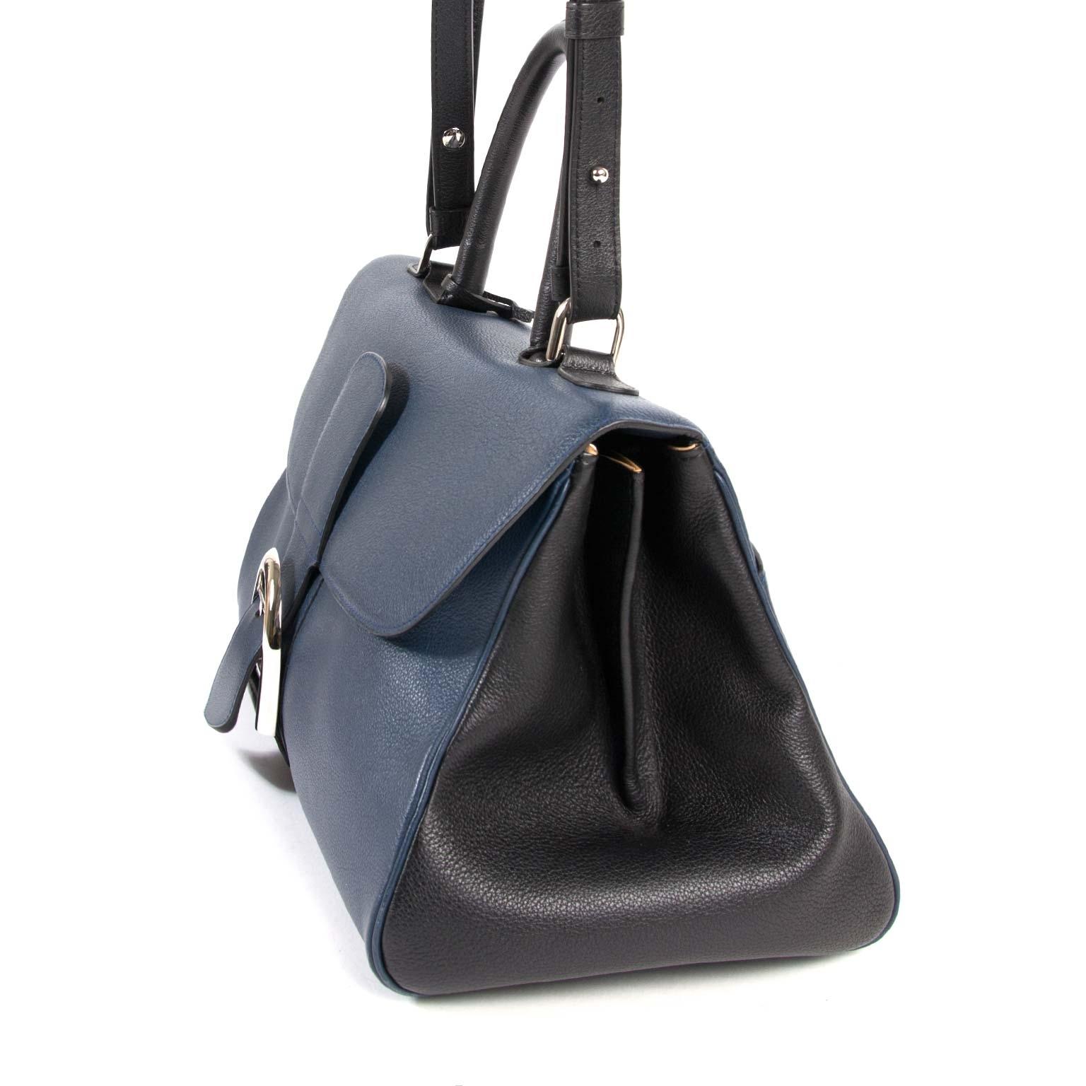 Delvaux Brillant East West Bicolor Bag Sellier Bicolore Calanque PA 00 for sale