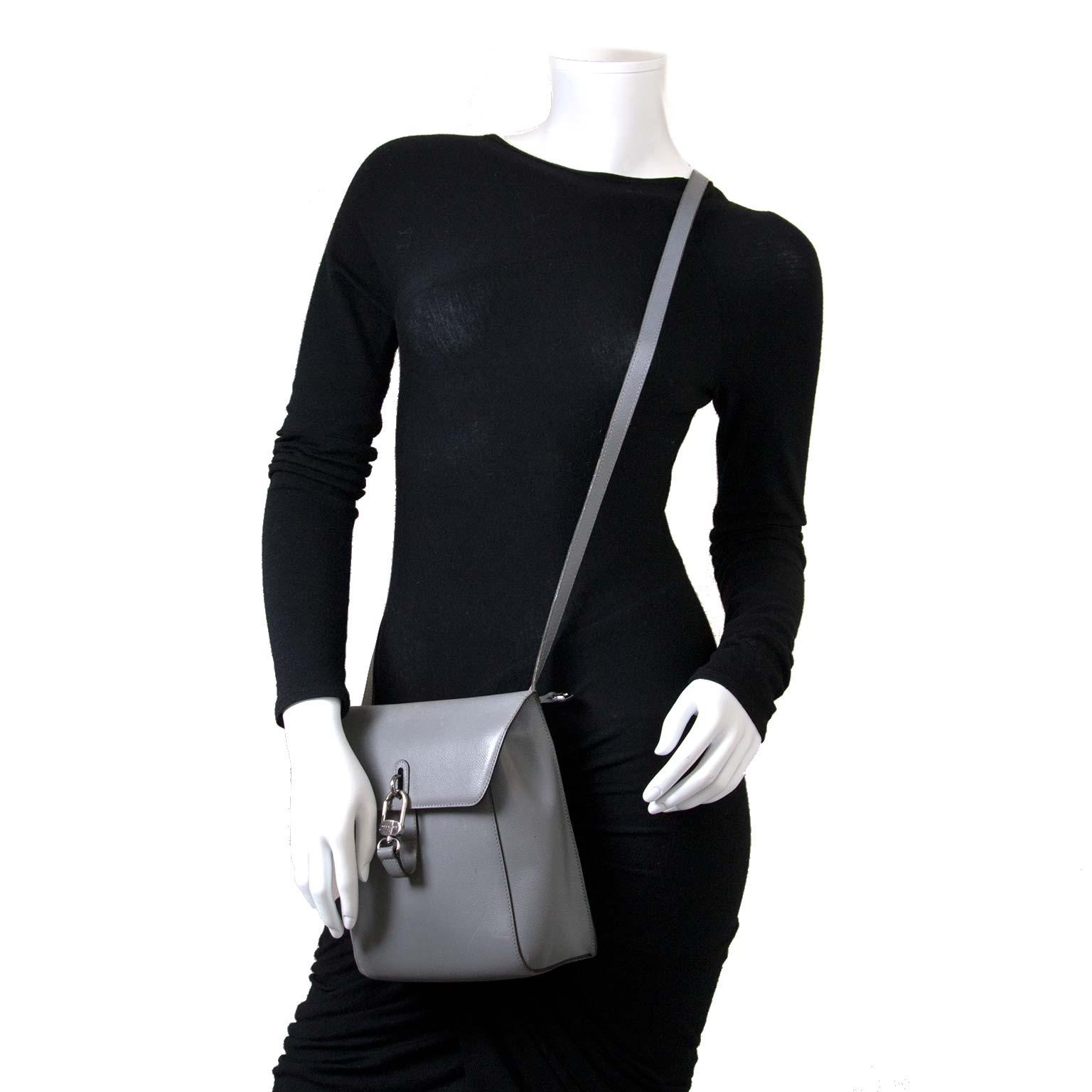 Bent u op zoek naar een authentieke Delvaux Grey Leather Crossbody Bag?