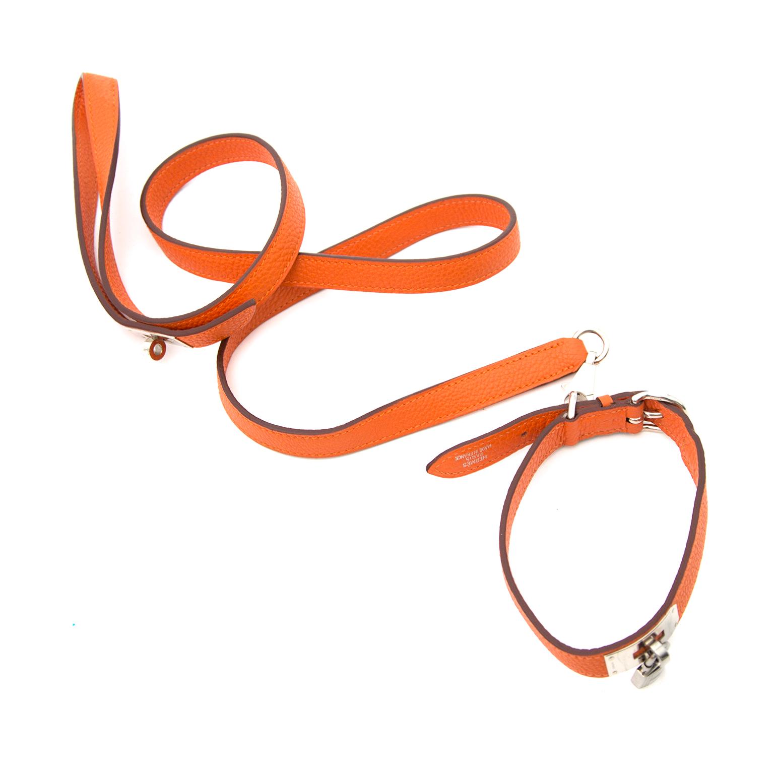Achetez Hermès Orange Dog Leash en ligne chez Labellov.com