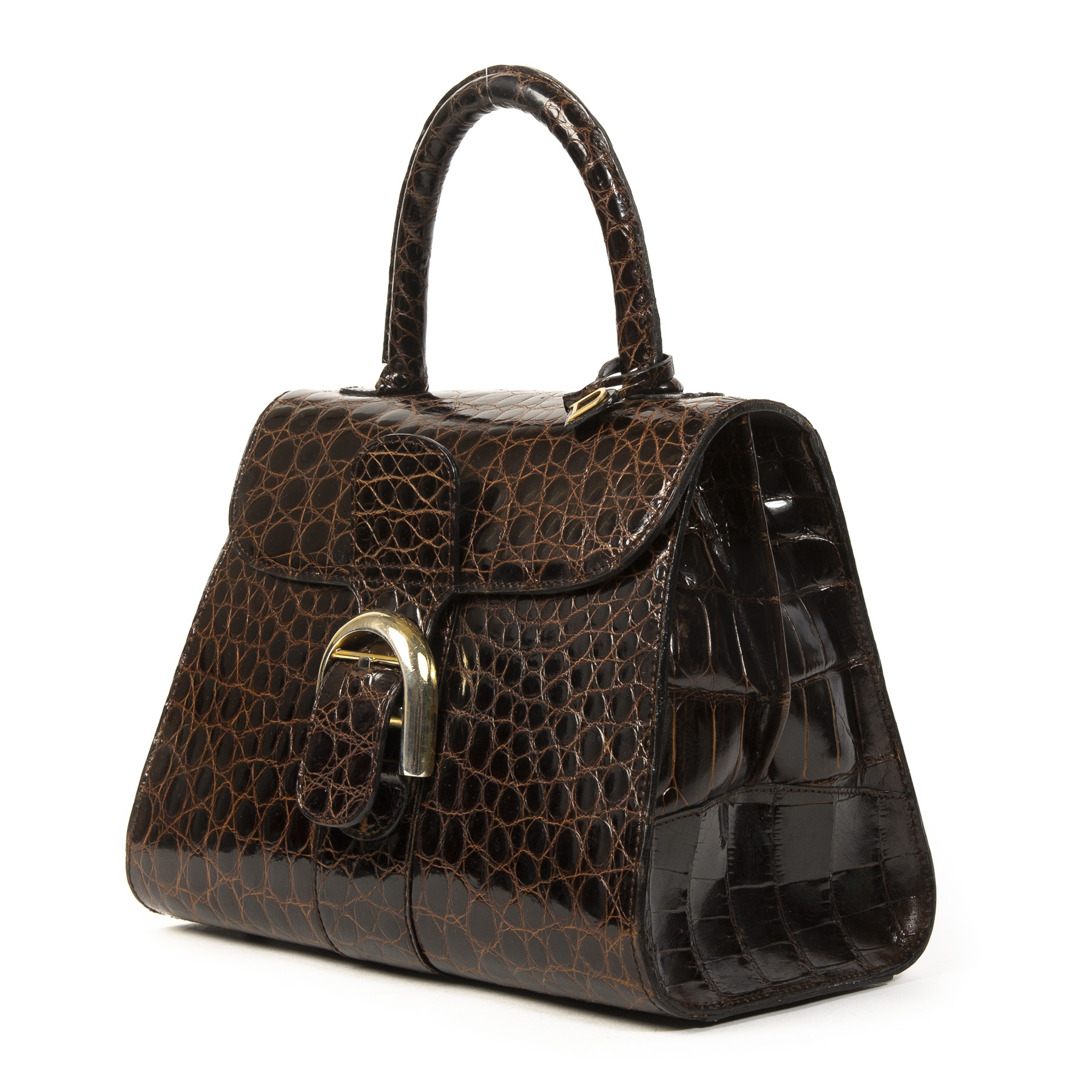 Delvaux Brown Croco Brillant PM