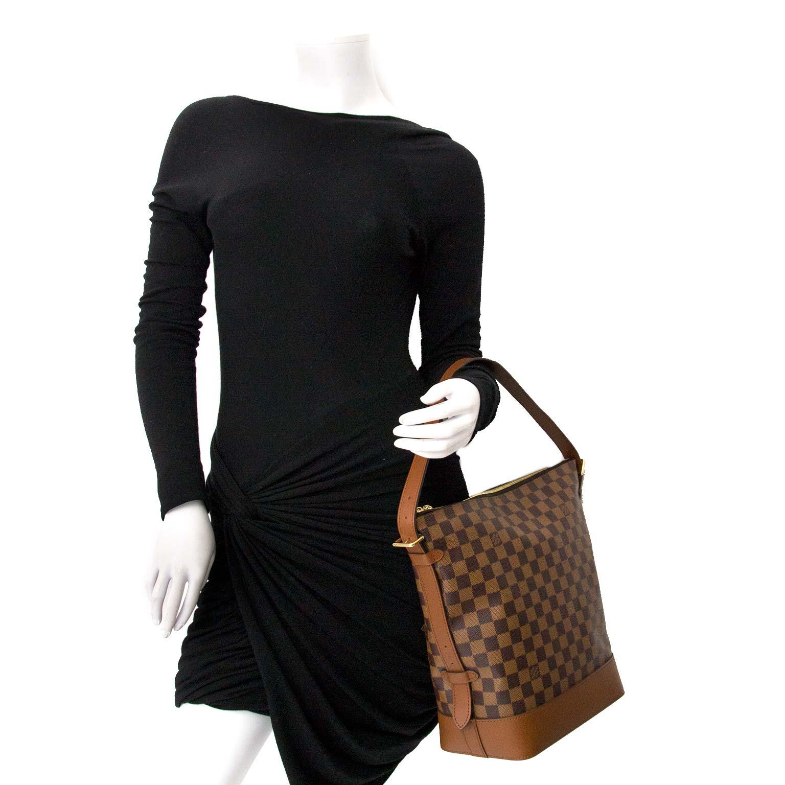 Louis Vuitton Damier Hobo Zipper Bag